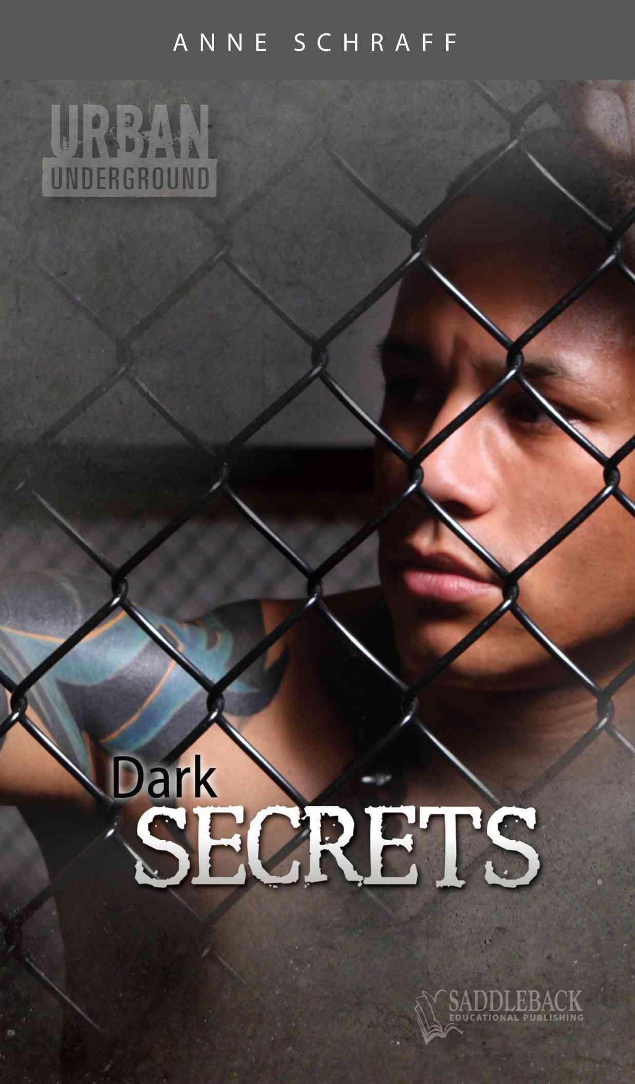 Dark Secrets By Schraff, Anne